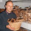 Gyöngyösi Sándor biogazda és bio shiitake gombái.
