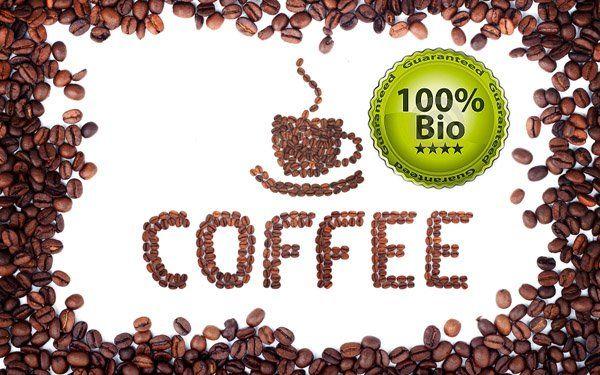 bio-kave