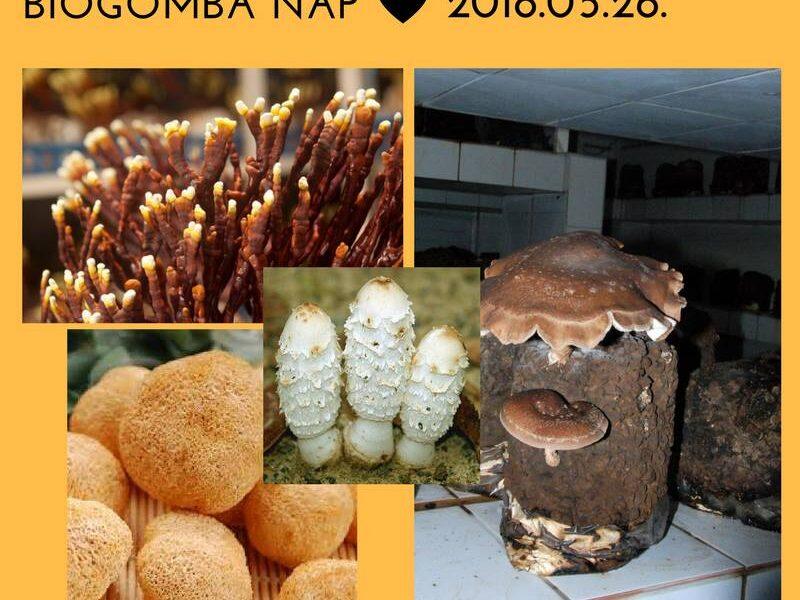 biogomba-nap-2018