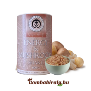 NaJa Forest Energy & Mushroom Shake 600g