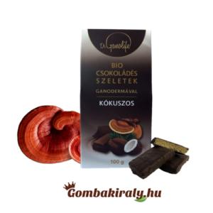 BIO csokoládés szeletek ganodermával - kókuszos
