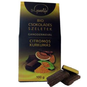 BIO csokoládés szeletek - citromos, kurkumás