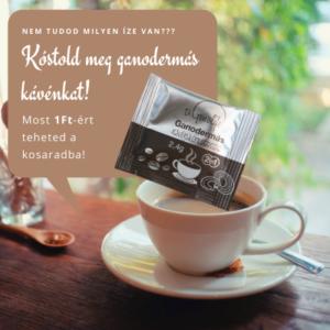KÓSTOLD MEG! Bio ganodermás kávé (1x)