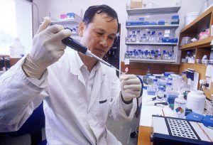 ganopoly-kutatás