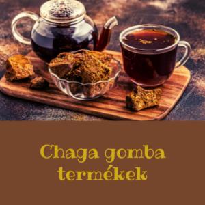 Chaga gomba